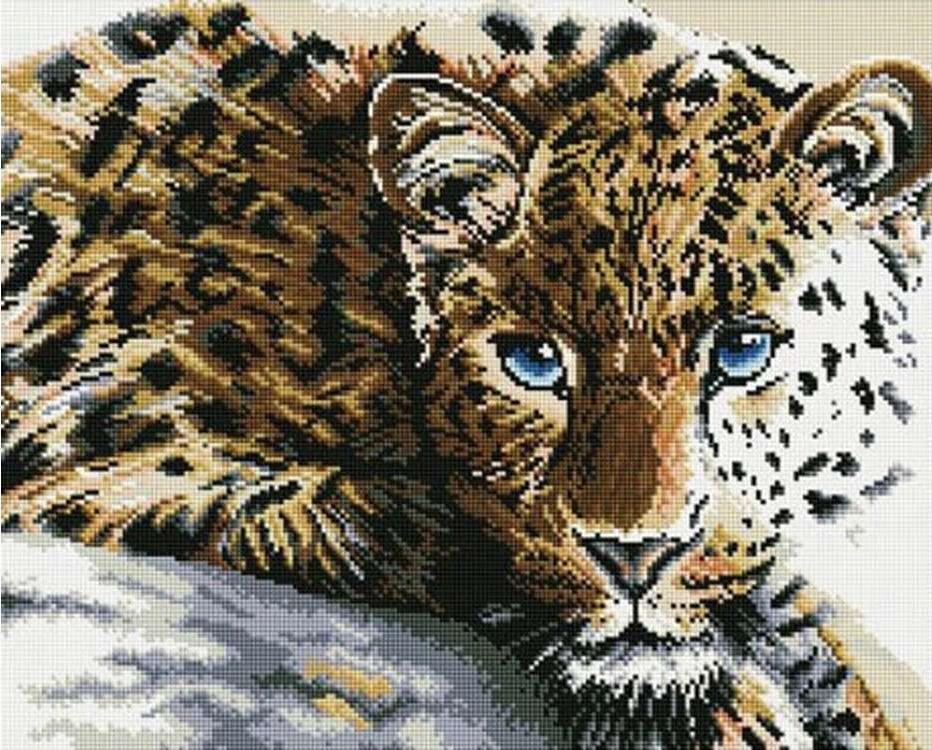 Алмазная вышивка «Леопард»Molly<br><br><br>Артикул: GZ829<br>Основа: Холст на подрамнике<br>Сложность: очень сложные<br>Размер: 40x50 см<br>Выкладка: Полная<br>Количество цветов: 24<br>Тип страз: Круглые непрозрачные (акриловые)