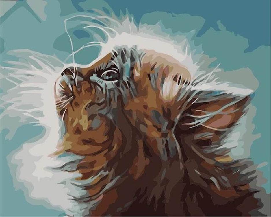 Картина по номерам «Котенок в мечтах»Цветной (Premium)<br><br><br>Артикул: MG2074_Z<br>Основа: Холст<br>Сложность: сложные<br>Размер: 40x50 см<br>Количество цветов: 24<br>Техника рисования: Без смешивания красок