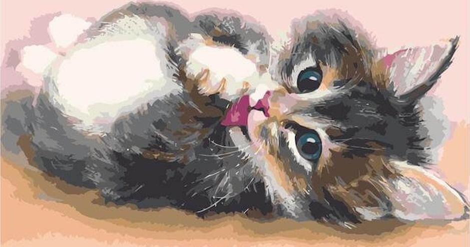 Картина по номерам «Милый котенок»Раскраски по номерам<br><br>