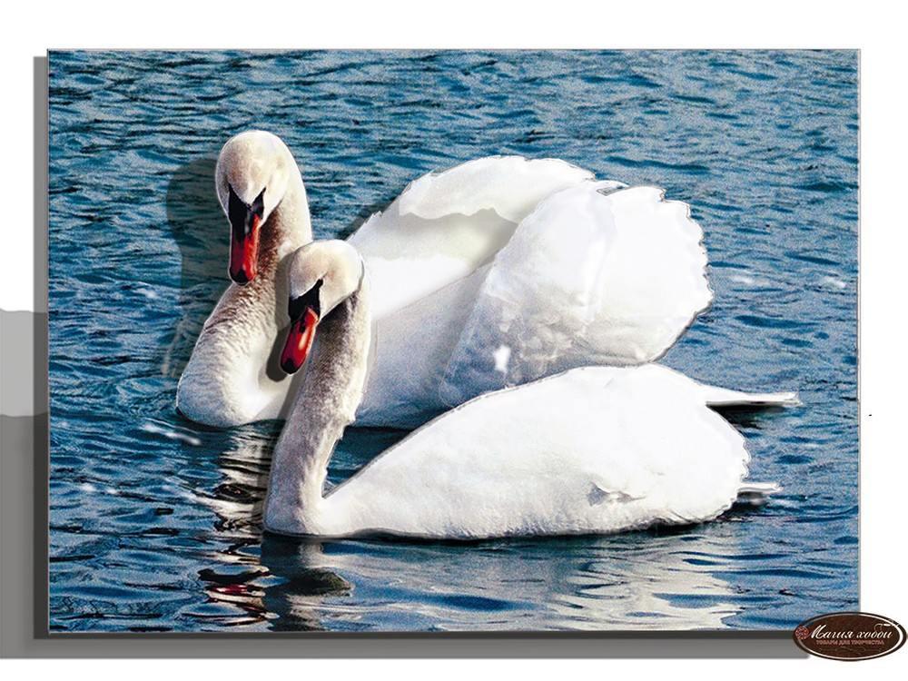 Папертоль «Белые лебеди»