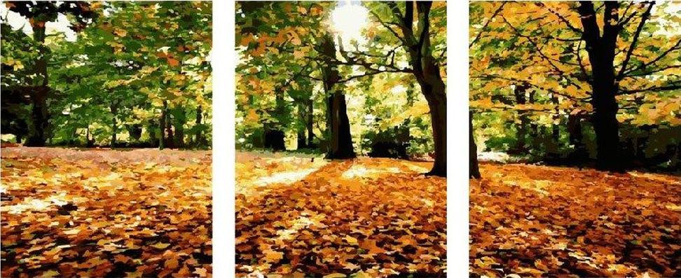 Картина по номерам «Осенний парк»Paintboy (Premium)<br><br><br>Артикул: PX5165<br>Основа: Холст<br>Сложность: средние<br>Размер: 3 шт. 40x50 см<br>Количество цветов: 29<br>Техника рисования: Без смешивания красок
