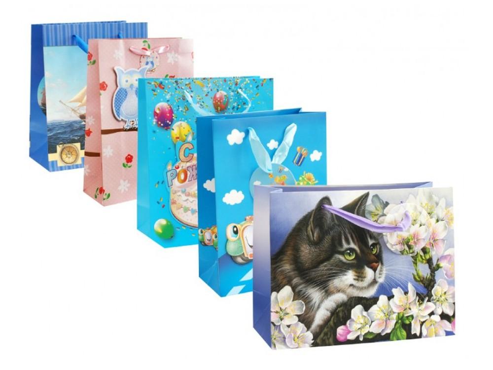 Набор подарочных пакетов «Вечеринка», 5 шт.Подарочные пакеты<br>Оригинальные подарочные пакеты станут прекрасным дополнением для вашего подарка. Пакеты выполнены из качественной плотной бумаги с хорошей печатью, объемные элементы на пакете придают дополнительный яркий акцент.<br><br>Артикул: 2014-SB<br>Размер: 18x23x10 см