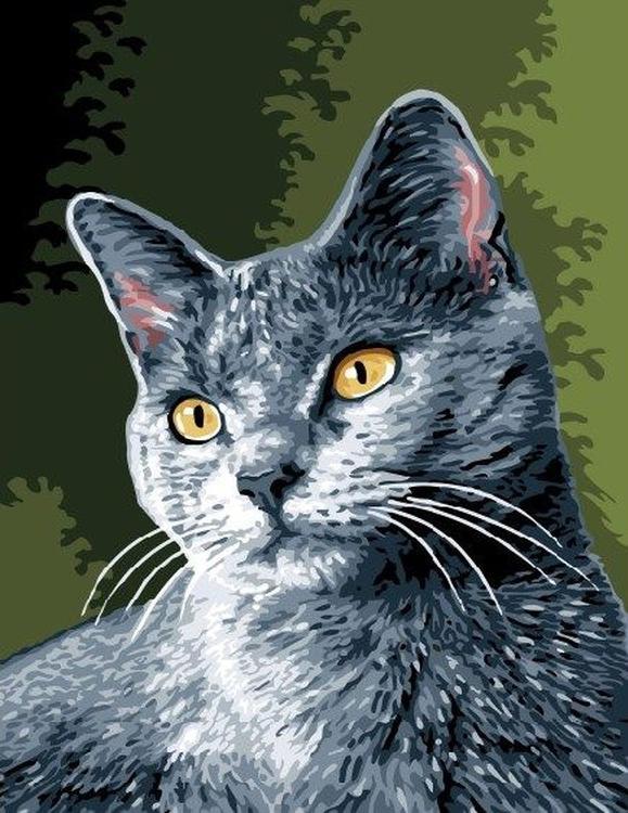 Картина по номерам «Серая кошечка»Раскраски по номерам<br><br>