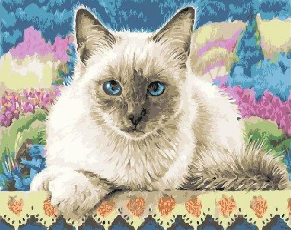 Картина по номерам «Тайская кошка» Николь ДжаханPaintboy (Premium)<br><br><br>Артикул: EX5906<br>Основа: Холст<br>Сложность: легкие<br>Размер: 30x40 см<br>Количество цветов: 20<br>Техника рисования: Без смешивания красок