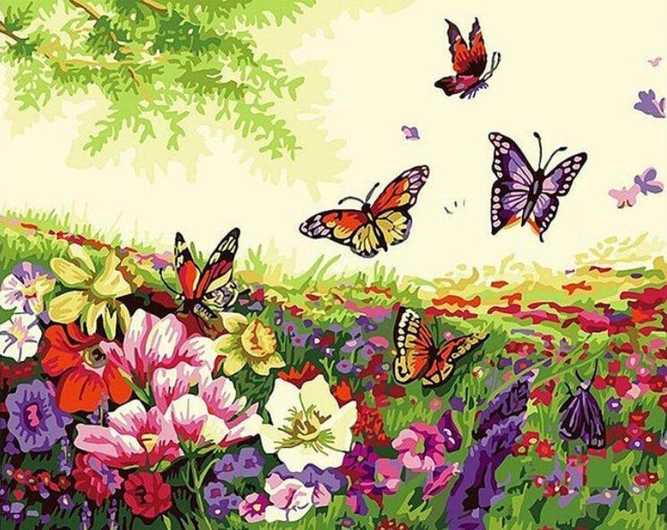 Картина по номерам «Бабочки на лугу»Paintboy (Premium)<br><br><br>Артикул: EX5927<br>Основа: Холст<br>Сложность: средние<br>Размер: 30x40 см<br>Количество цветов: 23<br>Техника рисования: Без смешивания красок