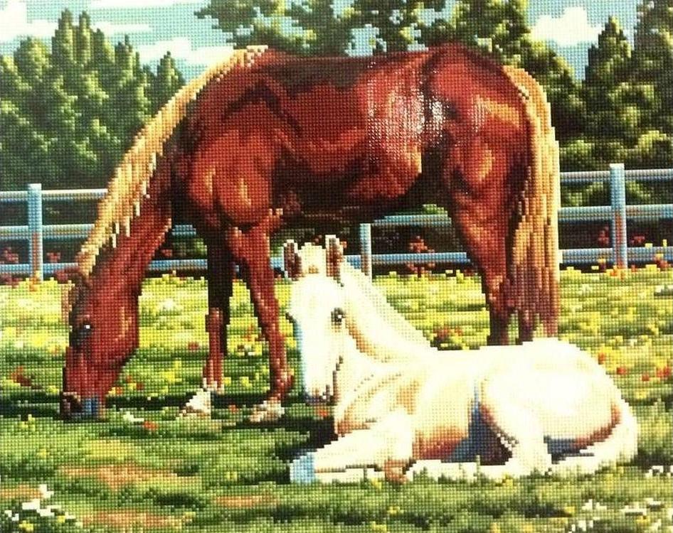 Алмазная вышивка «Лошадь и жеребенок»Алмазная вышивка Painting Diamond<br><br>