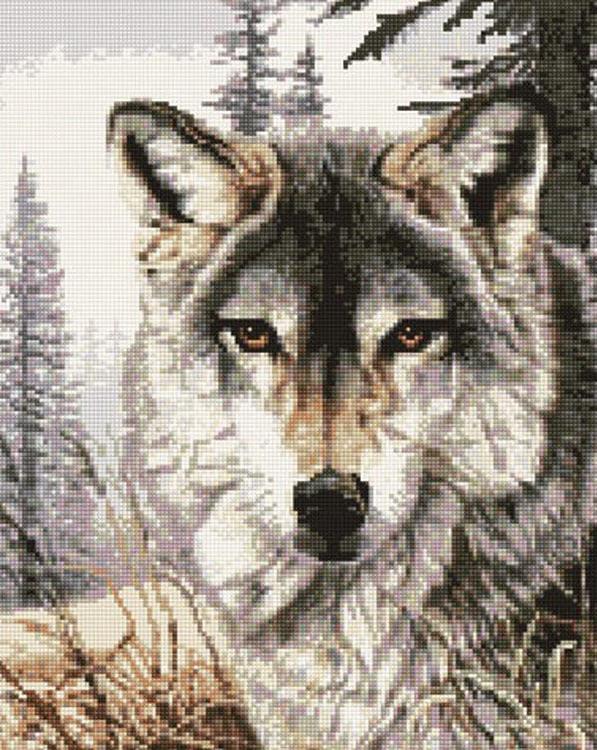 Алмазная вышивка «Добрый взгляд»Алмазная вышивка<br><br>