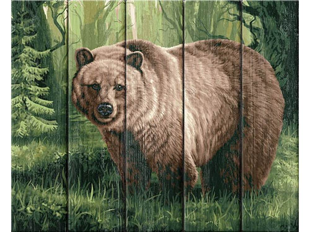 Купить Картина по номерам по дереву Dali «Царь леса»