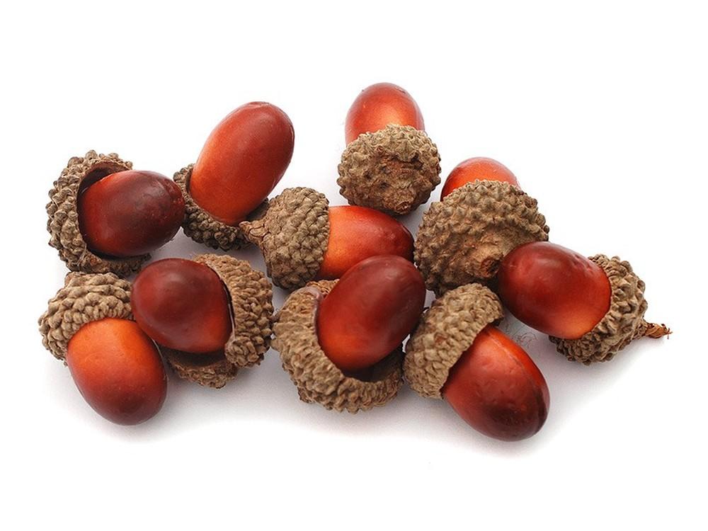 Желуди (светло-коричневые), Белоснежка  - купить со скидкой