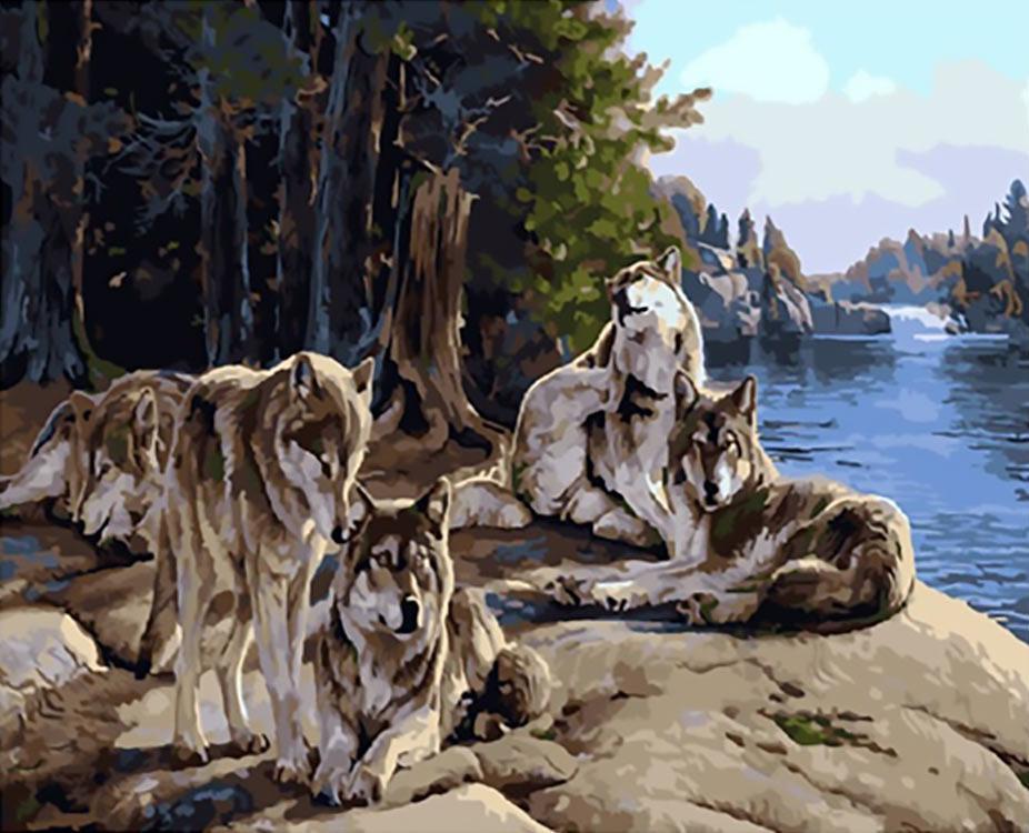 Картина по номерам «После охоты»