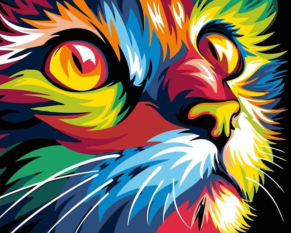 Картина по номерам «Радужный котик» Ваю Ромдони