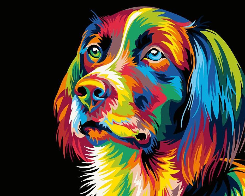 Купить Картина по номерам «Радужный пес» Ваю Ромдони, Живопись по Номерам, Китай