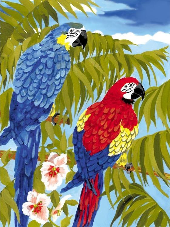 Купить Картина по номерам «Попугаи», Royal&Langnickel
