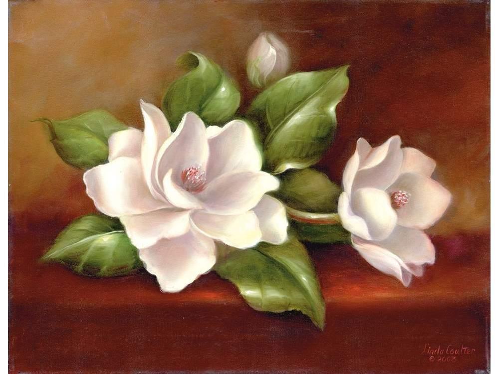 Картина по контурам гризайль «Магнолия» Линды Коултер