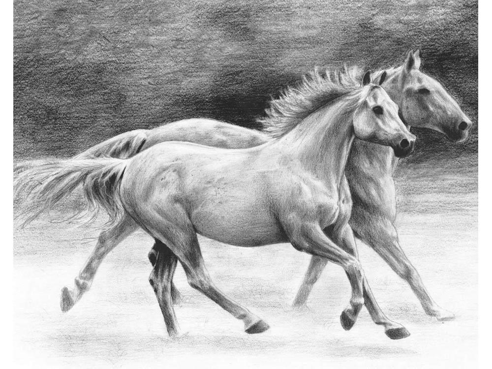 Набор для скетчинга «Бегущие лошади»