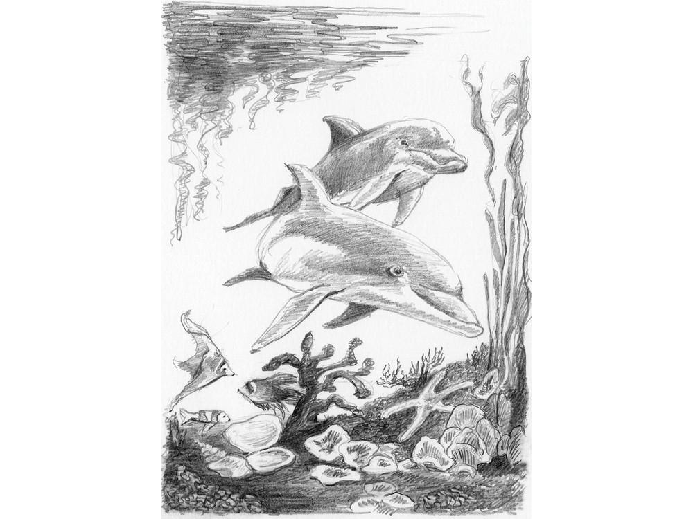 Набор для скетчинга «Дельфины»