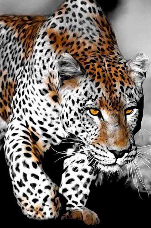Алмазная вышивка «Пронзительный взгляд леопарда»