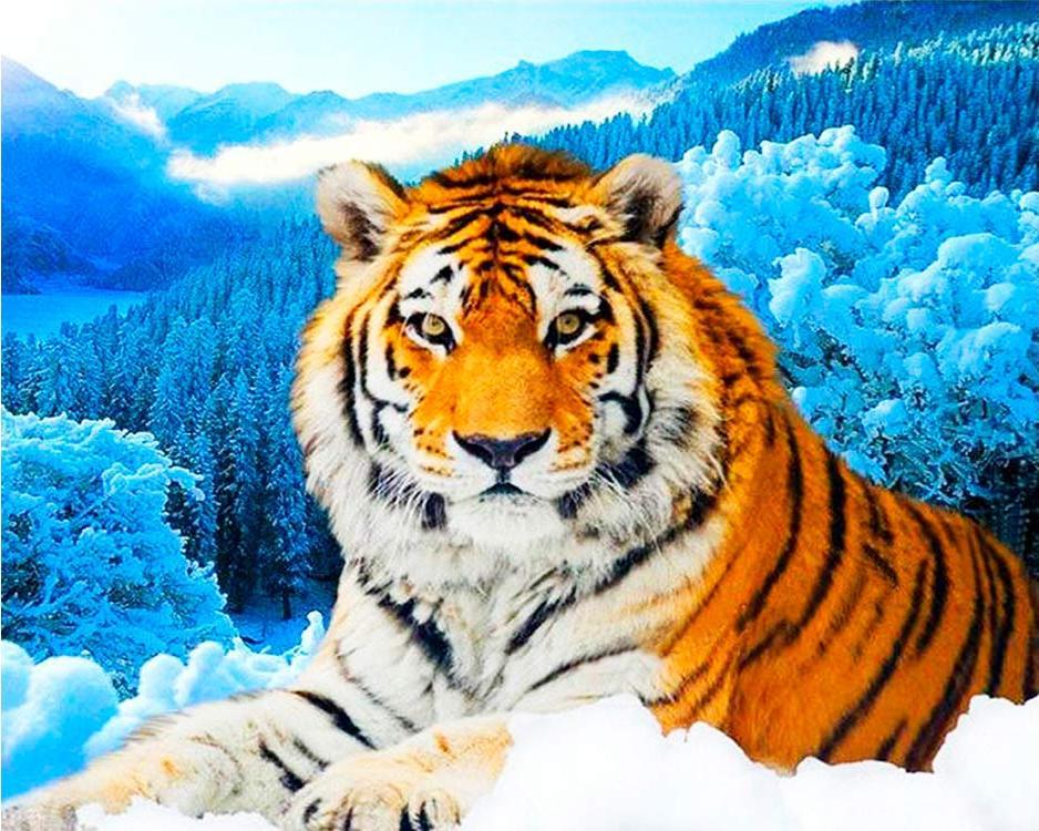 Купить Алмазная вышивка «Тигр на фоне зимнего леса», Алмазное Хобби, Россия