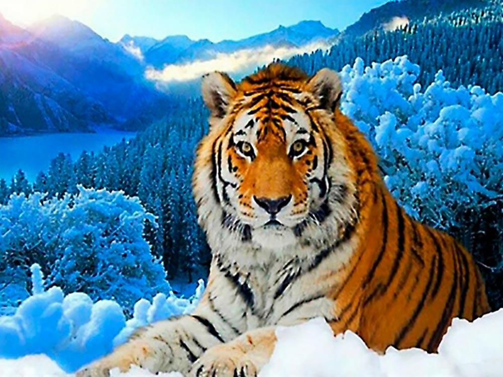 Набор для вышивания «Тигр»