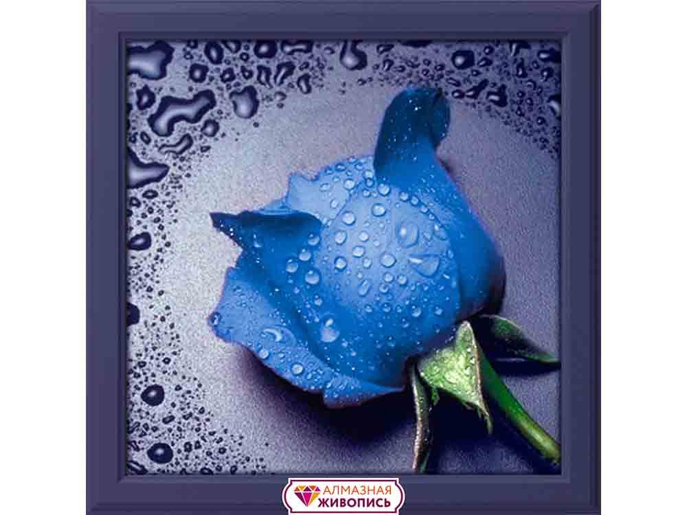 Купить Алмазная вышивка «Синяя роза», Алмазная Живопись, Россия