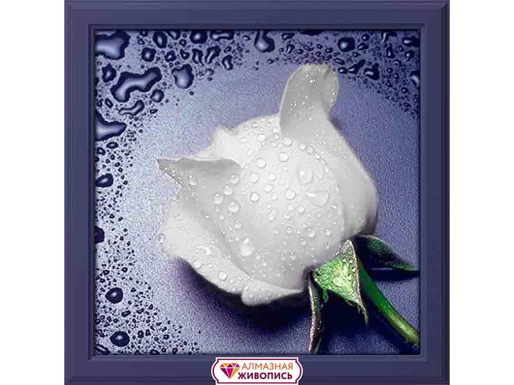 Купить Алмазная вышивка «Белая роза», Алмазная Живопись, Россия
