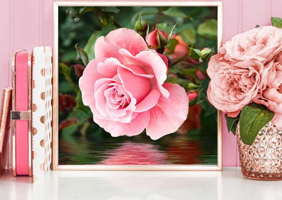 Купить Алмазная вышивка «Роза у воды», Алмазная Живопись