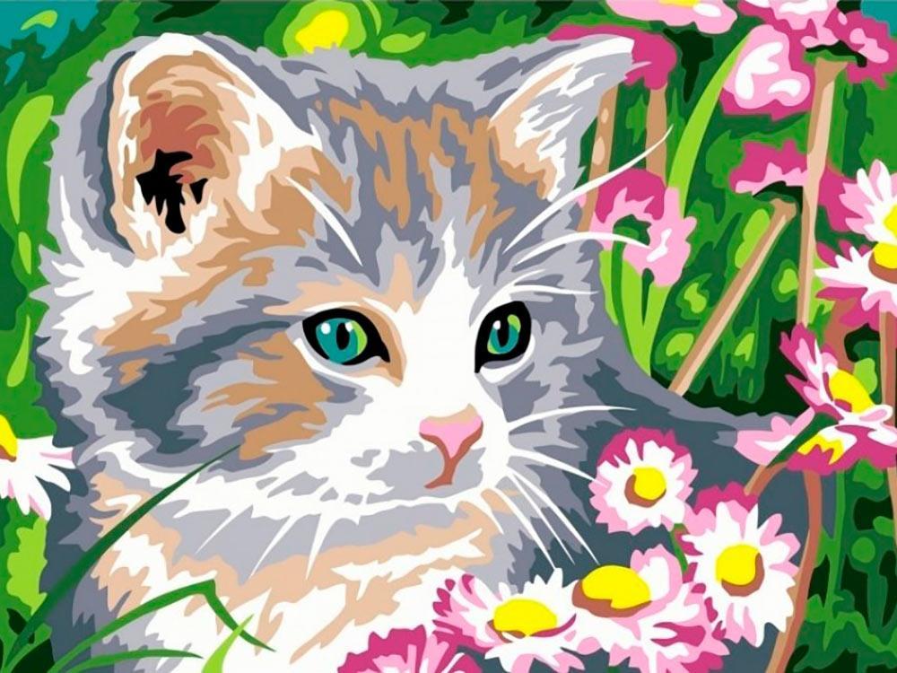 Картина по номерам «Котенок»