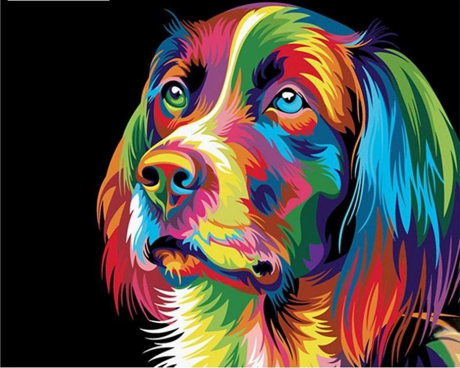 Купить Картина по номерам «Радужный пес» Ваю Ромдони, Paintboy (Premium), Китай
