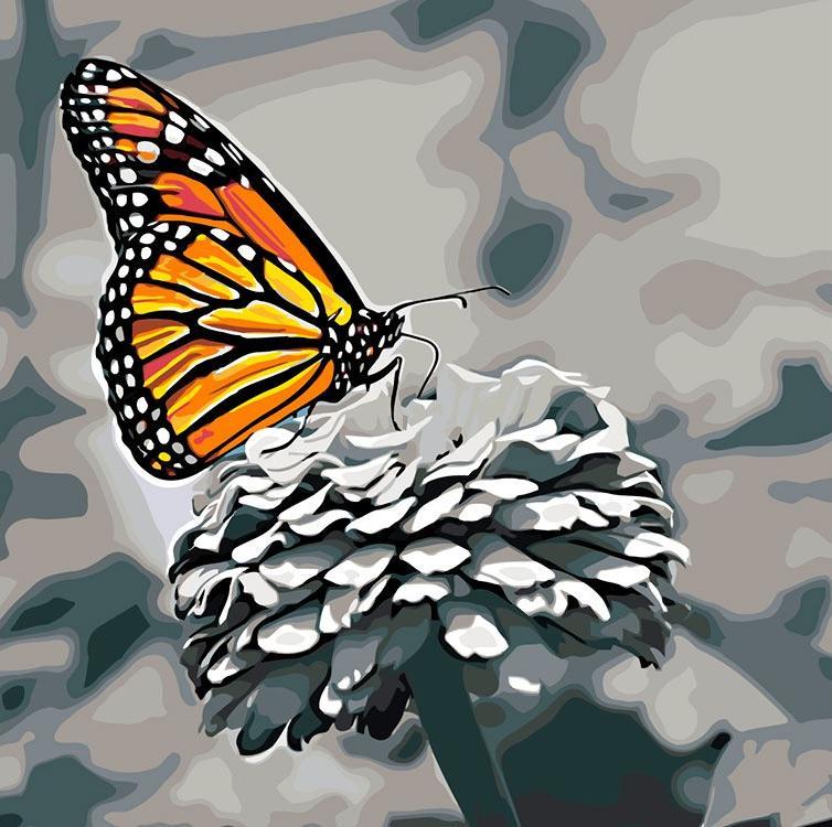 Картина по номерам «Бабочка на цветке»