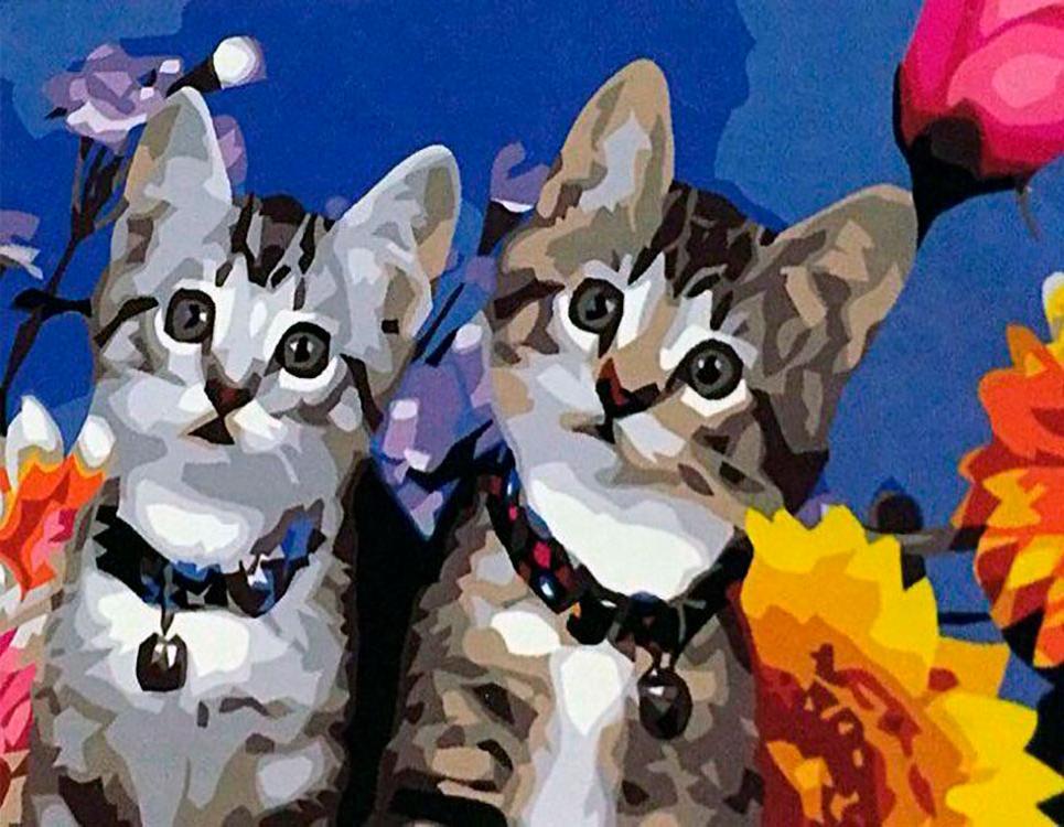 Картина по номерам «Два котенка»