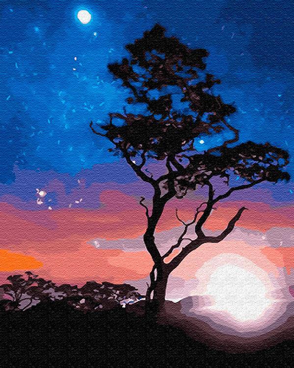 Картина по номерам «В звёздном сиянии», «В звёздном сиянии»