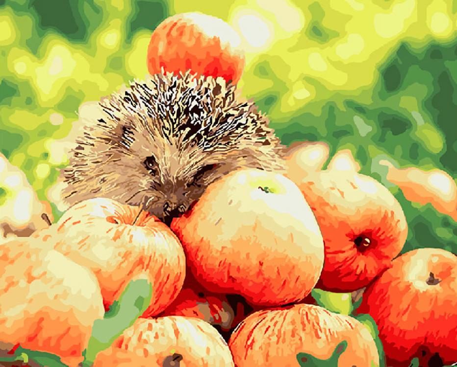 Купить Картина по номерам «Яблочный урожай», ВанГогВоМне