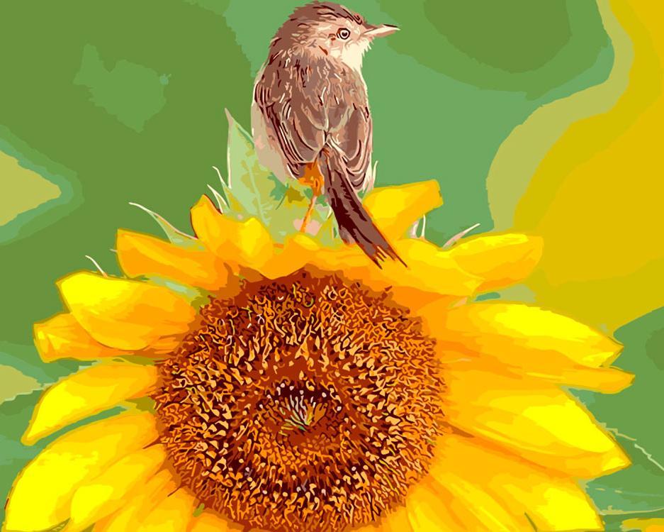 Картина по номерам «Подсолнечник и птичка»