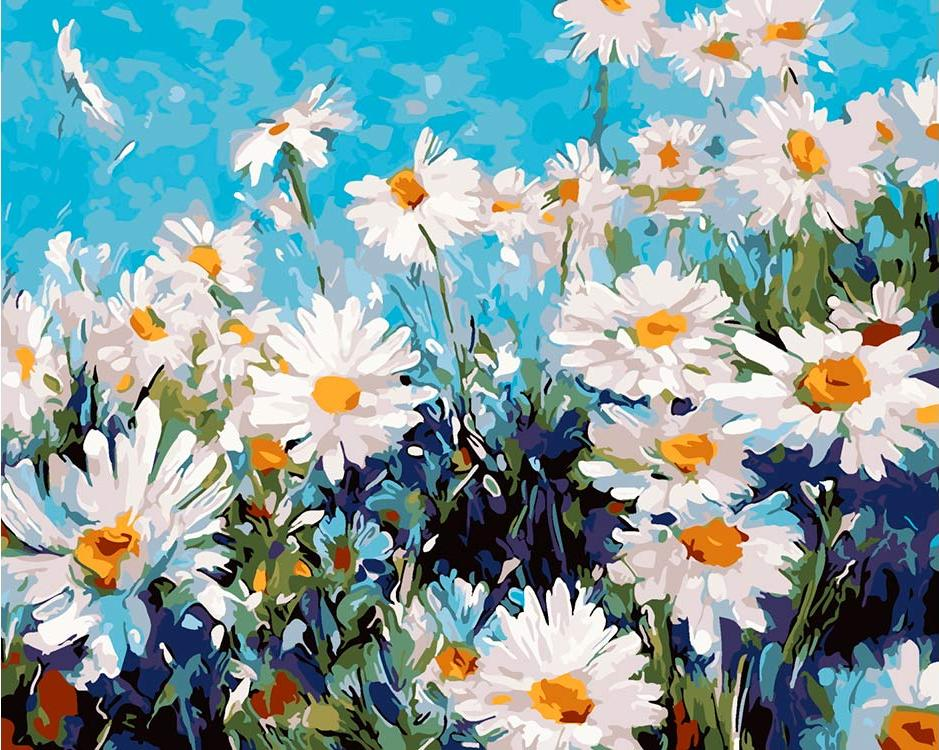 Купить Картина по номерам «Ромашки на лугу» Лизы Паломбо, ВанГогВоМне