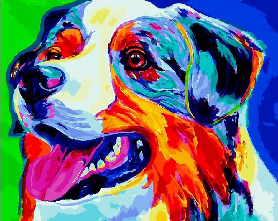 Купить Картина по номерам «Радужный пес», Paintboy (Premium), Китай, GX28056/PK24008