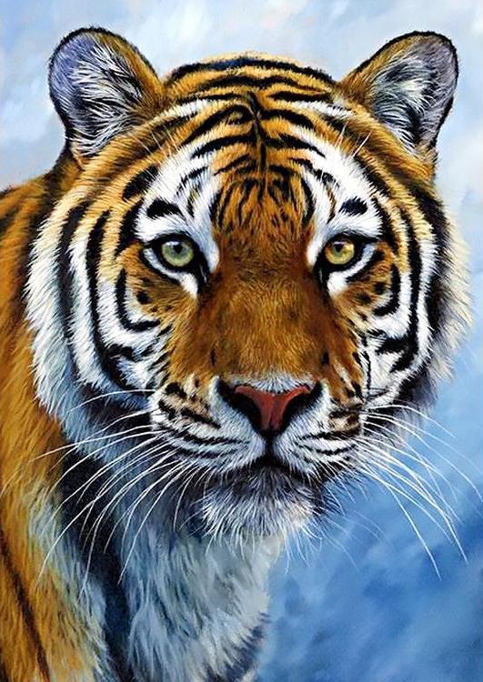 Купить Алмазная вышивка «Спокойствие тигра» Джейсона Моргана, Гранни