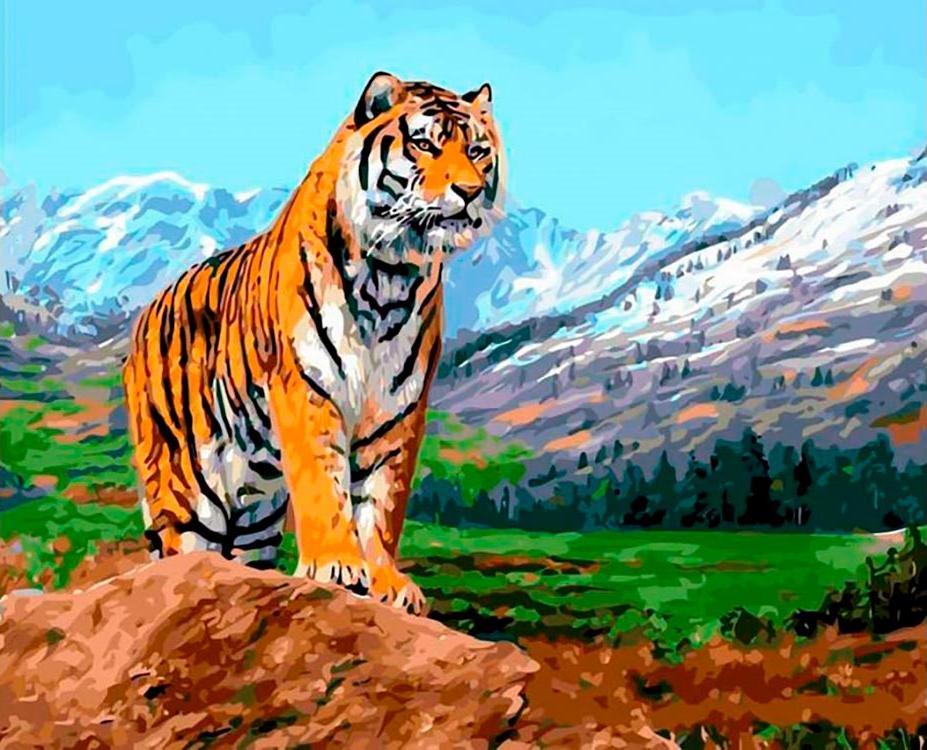 Картина по номерам «Тигр на фоне гор» Дэвида Стрибблинга