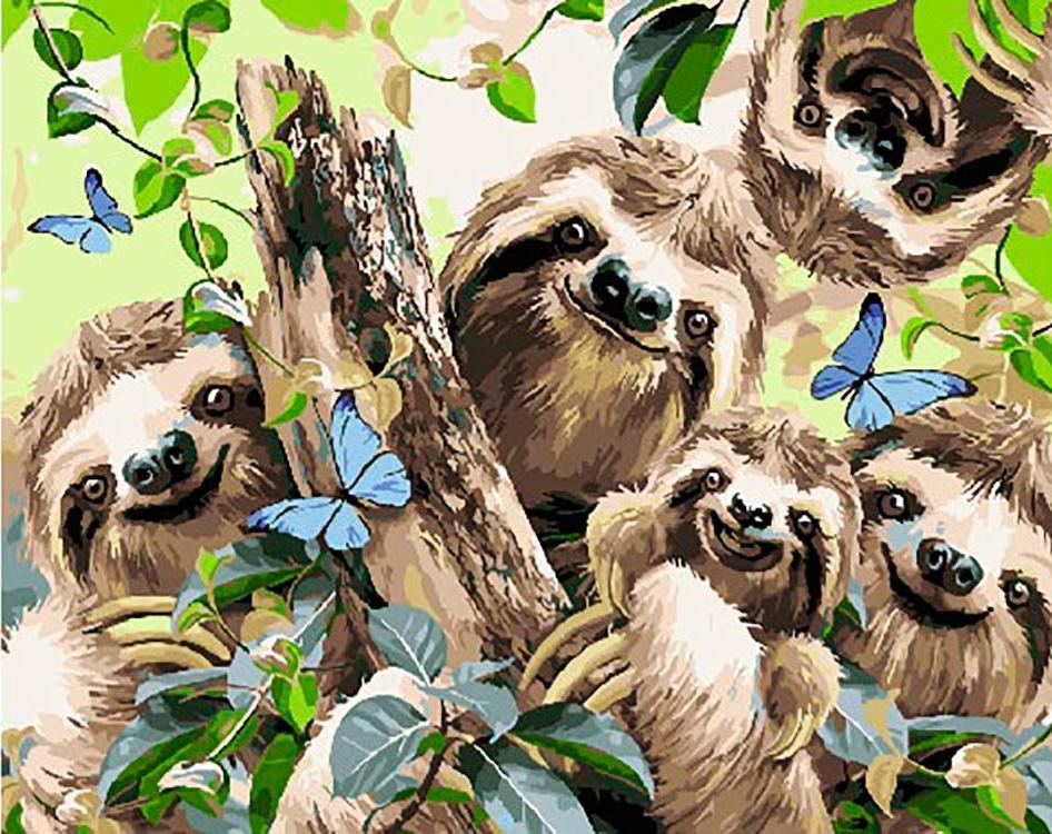 Картина по номерам «Ленивцы», «Ленивцы»