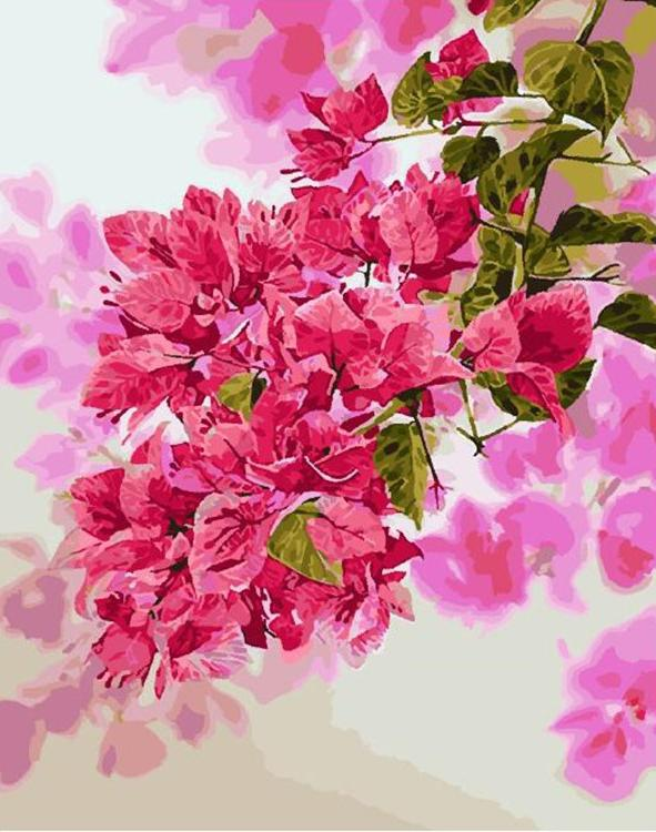 Купить Картина по номерам «Розовые цветы» Kitipong Maksin, Paintboy (Premium), Китай