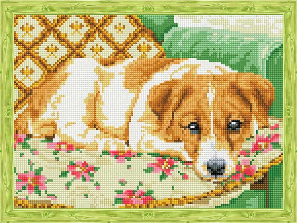 Алмазная вышивка «Пес на кресле»
