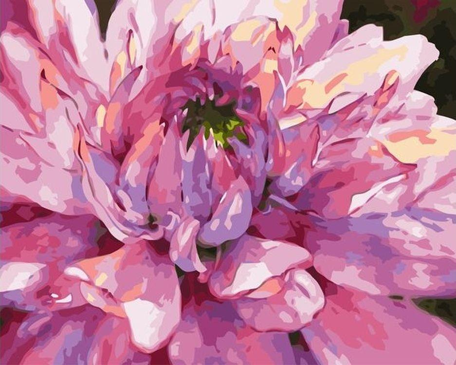 Купить Картина по номерам «Розовый цветок», Paintboy (Premium), VA-0663