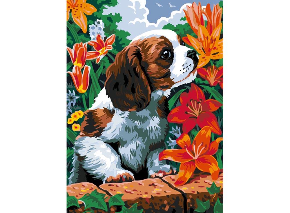 Купить Картина по номерам «Щенок и лилии», Color KIT, Россия, CE003