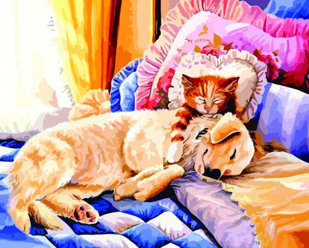 нас картинка кошка уютно спит история