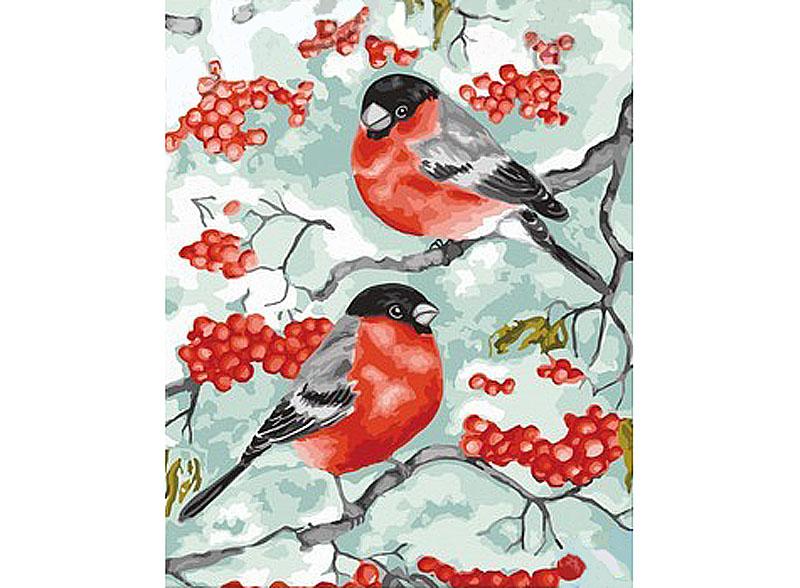 Купить Картина по номерам «Снегири», Hobbart, Россия, DZ4050014-Lite