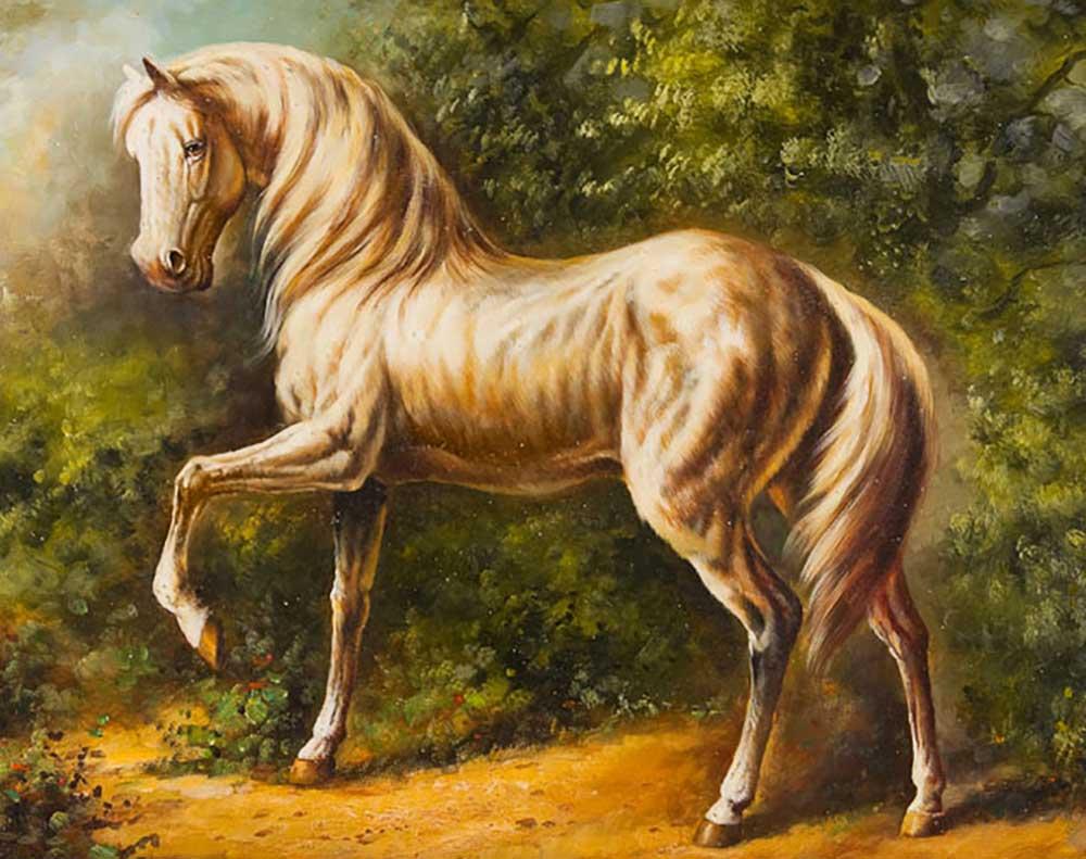 мужчины картинки златогривые кони неприхотливо