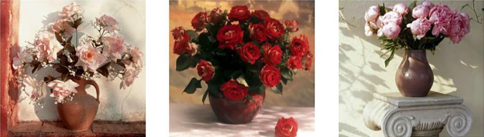 Картина по номерам «Удивительные розы», Paintboy (Premium), Китай, 3 шт. 50x50 см, PX5087  - купить со скидкой