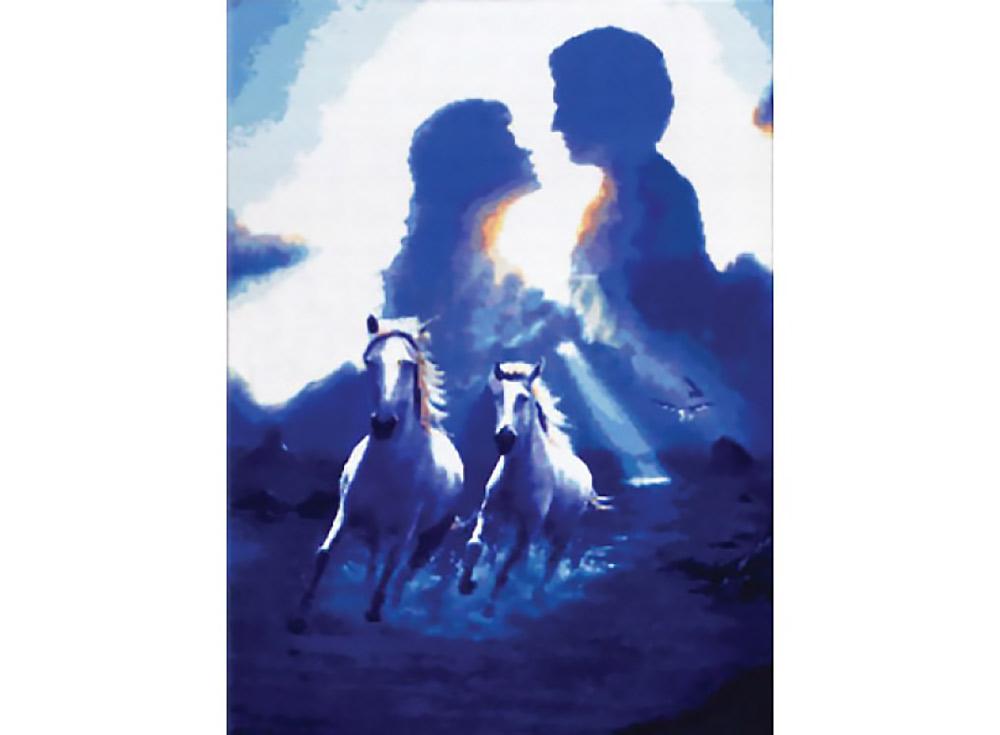 Купить Вышивка крестом, Набор для вышивания «Пара», Белоснежка, 45x62 см, В-1206