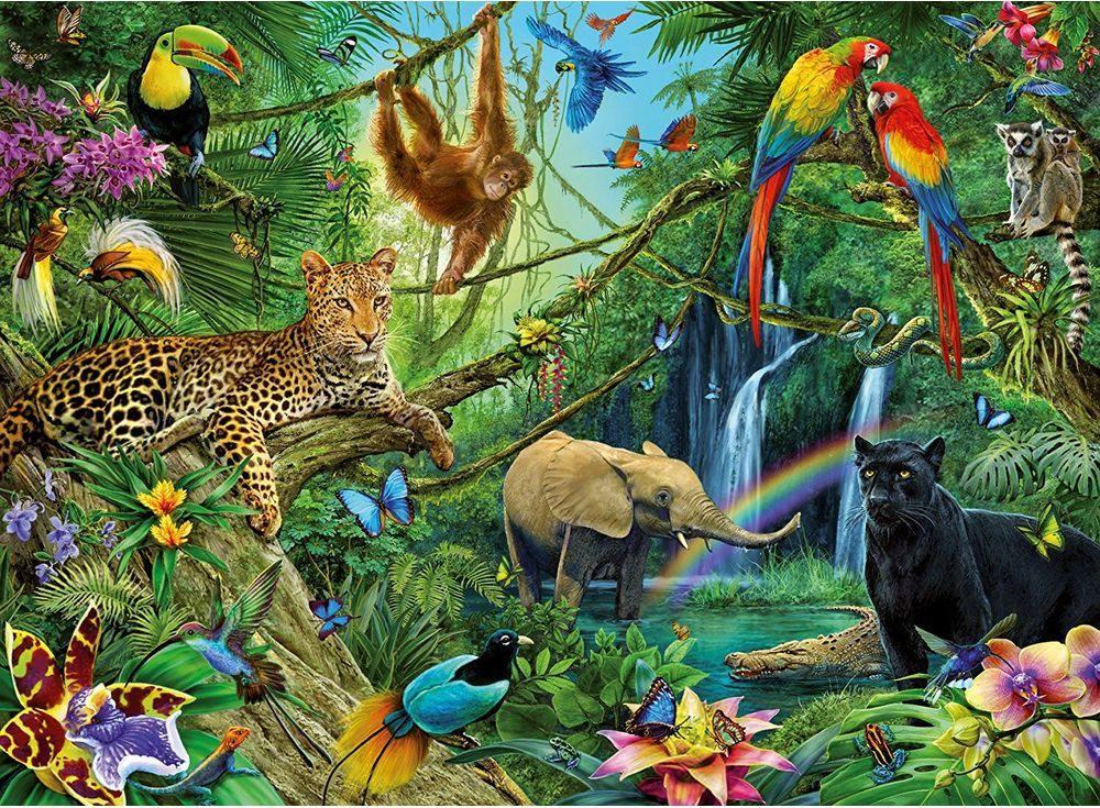 В мире животных картинка для детей