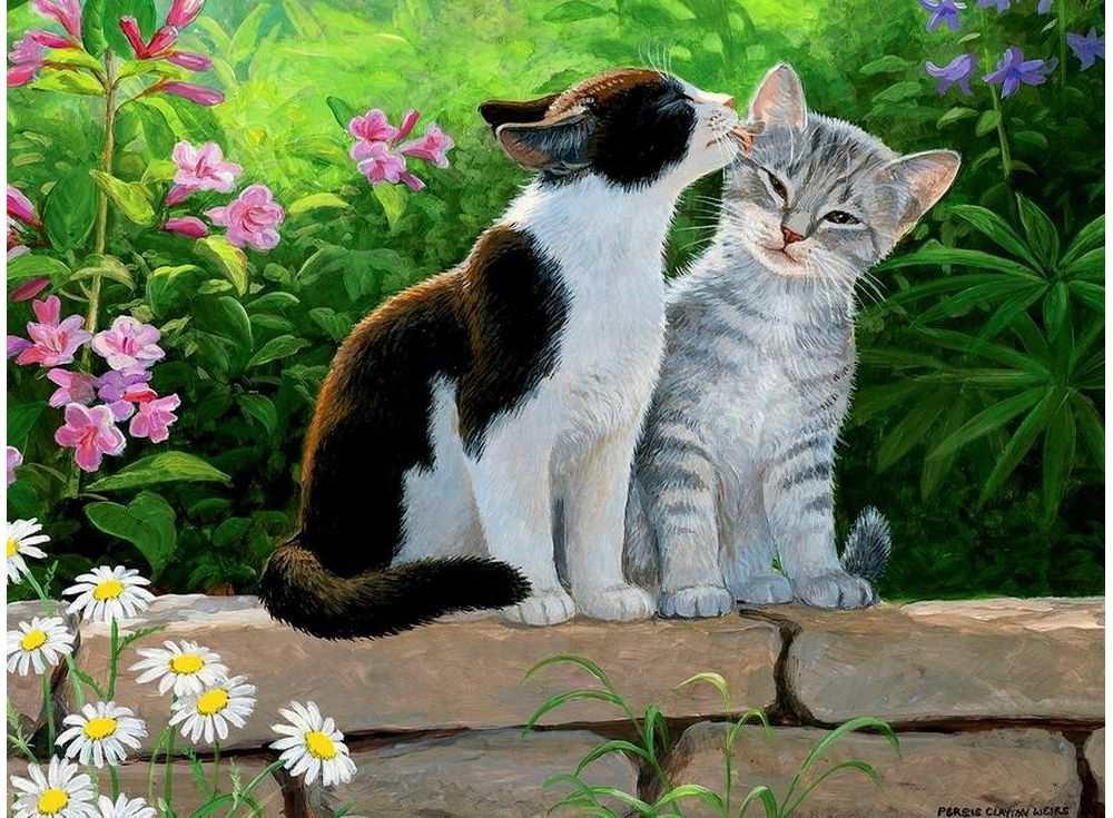 умер красивые рисунки котов и кошек пара бабушкиного рецепта