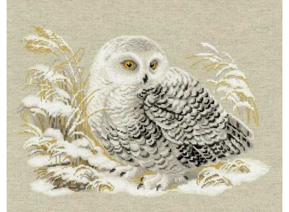 Купить Вышивка крестом, Набор для вышивания «Белая сова», Риолис (Сотвори Сама), 45x35 см, 1241